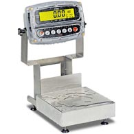 Detecto CA8 Series Admiral Washdown Bench Scales